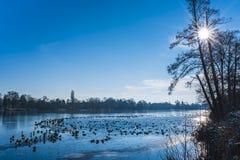 Heiliger vede - il lago santo, Potsdam Fotografie Stock Libere da Diritti