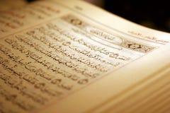 Heiliges Koran Buch u. Rosenbeet Lizenzfreies Stockfoto
