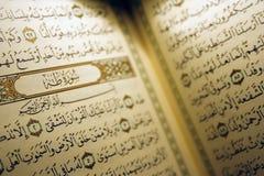 Heiliges Koran Buch u. Rosenbeet Stockbild