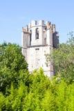 Heiliges Marie-Abtei in Lagrasse umgab von den Bäumen Lizenzfreie Stockfotografie