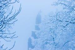 Heiliges Vladimir Monument in Kiew im Nebel Lizenzfreie Stockfotografie