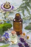 Heilpflanze- und Blumenauswahl, Pfefferminz, Passionsblume, Salbei, Thymian, Lavendelmelisse mit einer Aromatherapie Lizenzfreies Stockbild