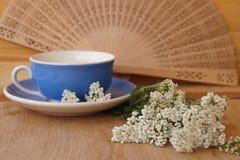 Heilpflanzen - Garbe, Blume der Schafgarbe Stockfoto