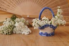 Heilpflanzen - Garbe, Blume der Schafgarbe Lizenzfreie Stockbilder