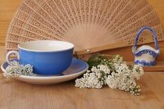 Heilpflanzen - Garbe, Blume der Schafgarbe Stockfotos
