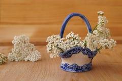 Heilpflanzen - Garbe, Blume der Schafgarbe Stockbilder