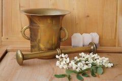 Heilpflanzen - Garbe, Blume der Schafgarbe Lizenzfreies Stockbild
