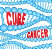 Heilungs-Krebs-Wörter in der DNA-Strangs-medizinischen Forschung Stockfoto