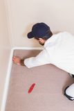 Heimwerker, der einen Teppich niederlegt Lizenzfreie Stockfotos