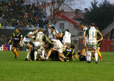 Heineken Cup rugby match USAP vs London Irish Royalty Free Stock Image