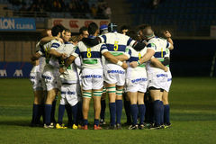 Heineken Cup rugby match USAP vs Treviso Stock Images