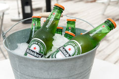 Heineken piwo obraz royalty free