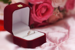 Heirat/Verlobungsring Lizenzfreies Stockfoto