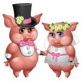 Heirat von Braut- und Bräutigamschweinen in den Hochzeitsanzügen Stockbilder