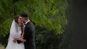 Heiratende reizende Paare stock video