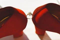 Heiratender goldener Ring zwischen den Braut ` s Schuhen auf einem hellen Hintergrund Lizenzfreies Stockfoto