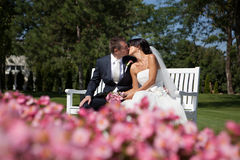 Heiratskuß Stockfoto