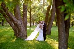 Heiratspaar auf der Natur umarmt sich Stockbilder