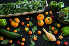 Heirloom and cherry tomatoes with fresh herbs, kale and assorted squash and peppers royalty free stock photos