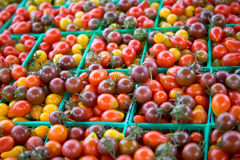 Heirloom Cherry Tomatoes (hori Stock Images