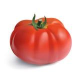 Heirloom Garden Tomato Royalty Free Stock Photo