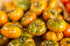 Heirloom organic imperfect tomatoes at local farmer market stock images