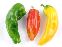 Heirloom peppers. Green, red & yellow Italian heirloom peppers Royalty Free Stock Photos