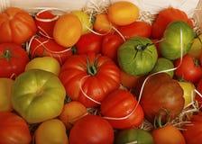 Heirloom pomidory także znać jako dziedzictwo pomidory zdjęcie stock