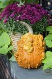 Heirloom Pumpkin Stock Photo