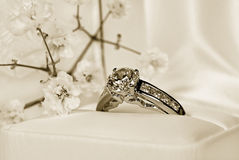 Heirloom-Ring stockfotografie