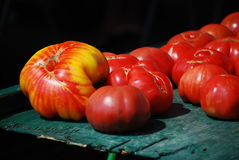 Heirloom-Tomate lizenzfreies stockfoto