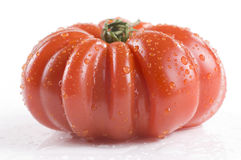 Heirloom-Tomate Stockfoto