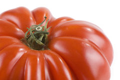 Heirloom tomato. Isolated on a white background stock photography