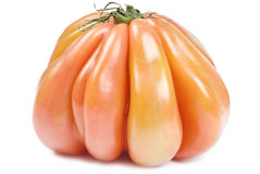 Heirloom Tomato Isolated on White Royalty Free Stock Image