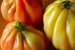 Heirloom Tomatoes stock photos
