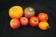 Heirloom Tomatoes Stock Photography