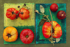 Heirloom Tomatoes. On painted surfaces. Clockwise from lower left: Red Brandy Wine and Yellow Brandy Wine, Cavern, Black Prince, and a Striped German/Hess. They Royalty Free Stock Photography