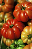 Heirloom tomatoes. Heirloom/ beefsteak tomatoes at the market Stock Images