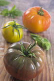 Heirloom tomatoes and basil. Leaves and spices stock images