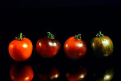 Heirloom tomatoes on black reflective background Royalty Free Stock Image