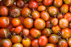 Heirloom tomatoes on display Royalty Free Stock Image