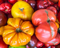 Heirloom tomatoes on display 3 Stock Images