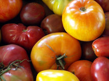 Heirloom Tomatoes. Full frame shot of a bunch of fresh picked heirloom tomatoes royalty free stock photography