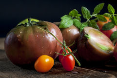 Heirloom tomatoes 2 Royalty Free Stock Image