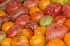 Heirloom Tomatoes at Market Royalty Free Stock Image