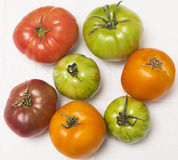 Heirloom tomatoes on white cloth. Colorful heirloom tomatoes in various sizes on white cloth background. Overhead shot Royalty Free Stock Images