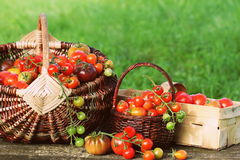 Heirloom variety tomatoes in baskets on rustic table. Colorful tomato - red,yellow , orange. Harvest vegetable cooking conception Stock Image