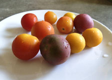 HeirloomCherryTomatoesOnWhitePlate_LajlaJane Stock Images