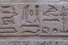 Heiroglyphs Στοκ Εικόνες