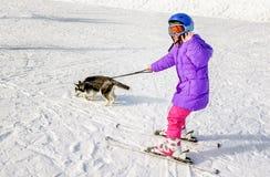 Heiserer Welpe, der kleines Mädchen auf dem Schneeskifahren schleppt lizenzfreie stockbilder